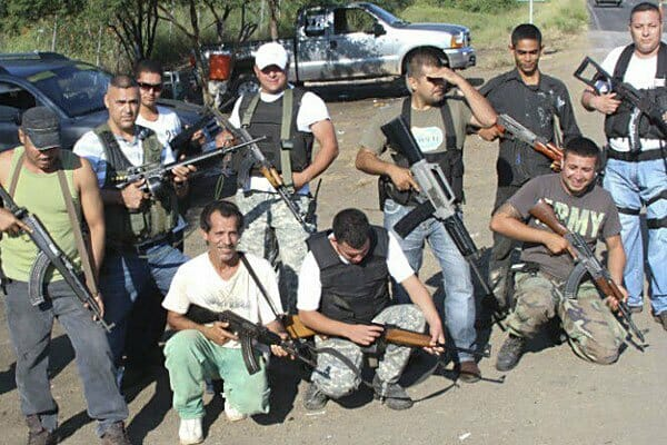 Self-defense force: armed with police weapons?