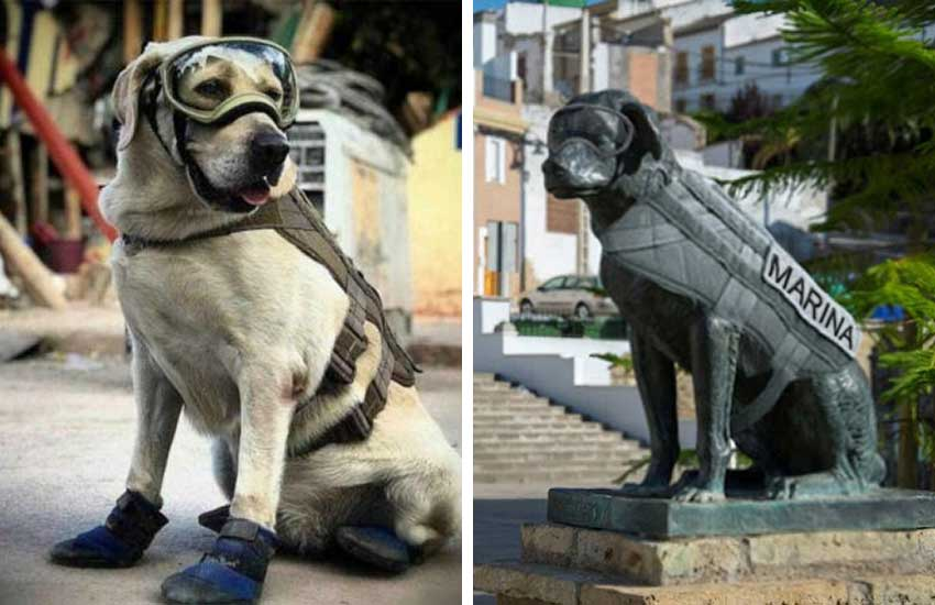 Rescue dog Frida, left, and her statue in Puebla.