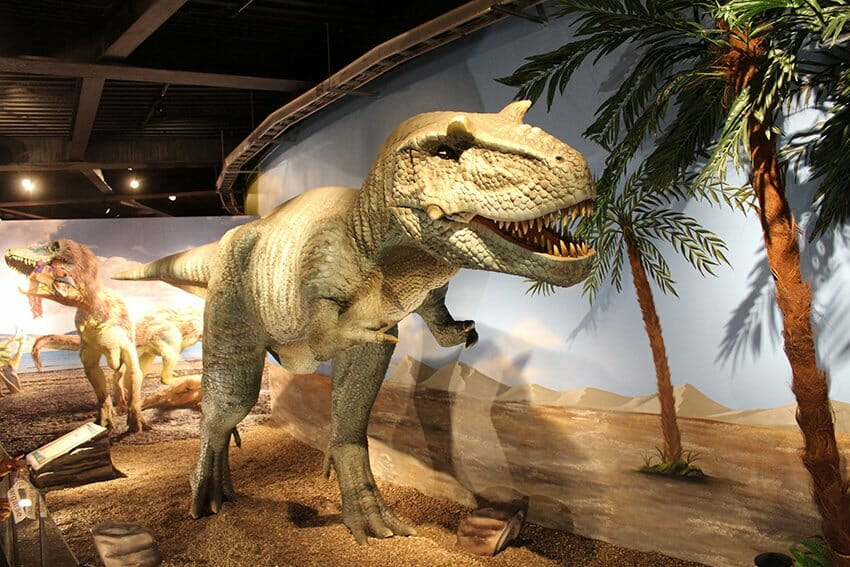 One of the displays at the Monterrey dinosaur exhibition.