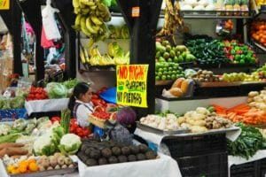 Keep your hands off the avocados at El Regreso de Jr. Díaz, says the sign: they're not stones.