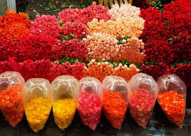 A rainbow of roses and petals to choose from.