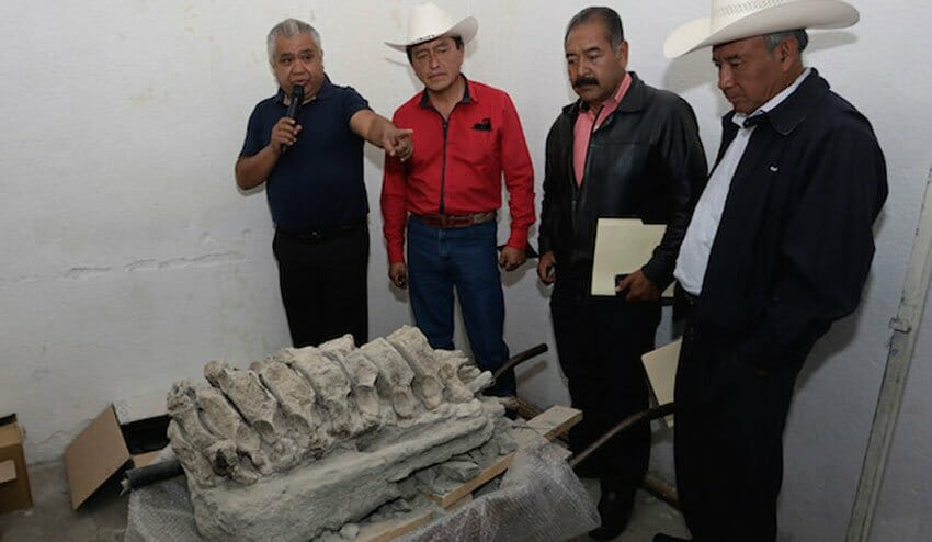 Members of Tepalcayotl with fossils that have been discovered in Puebla.