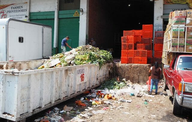 The massive amounts of organic trash fill dozens of dumpsters a day.
