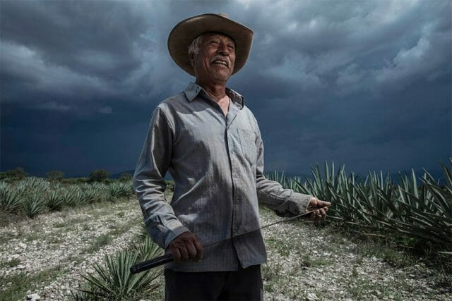 Felipe Cortés Venegas is one of the mezcaleros who work with Maguey Melate.