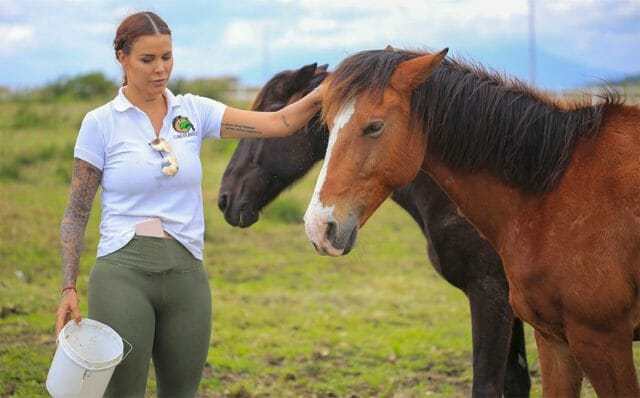 We need to start treating horses as sentient beings,' Larrea says.