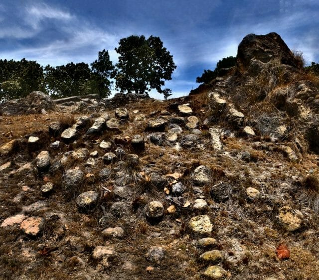 """Hundreds of """"fairy footstools"""" resembling tree stumps are scattered throughout Villa Felicidad."""