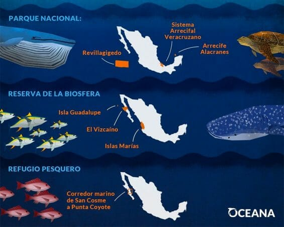 The protected areas where illegal fishing has taken place.