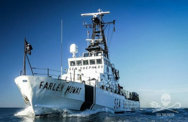The Sea Shepherd Conservation Society's boat the Farley Mowat.