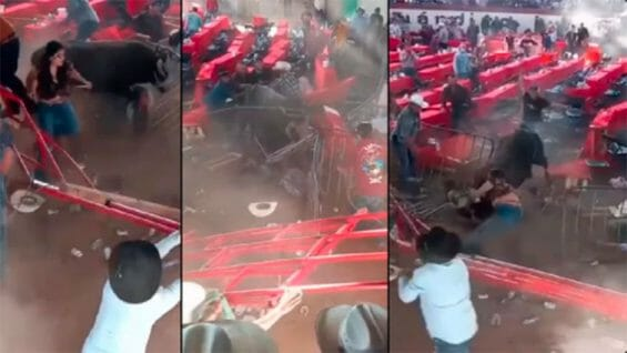 Video frames reveal havoc in the bullring Sunday.