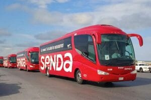 buses head north with candidates for Covid vaccine.