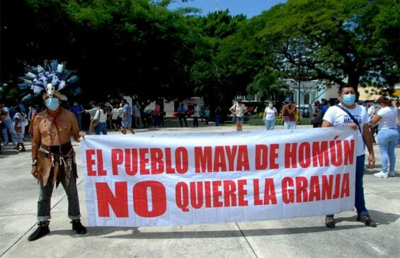 """Protesters display a banner with the words, """"The Mayan people of Homún don't want the farm."""""""