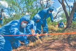 Investigators search for human remains