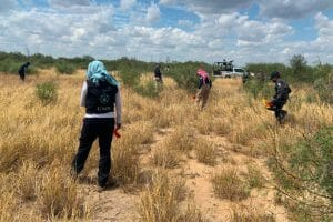 Searchers at work in Tamaulipas.